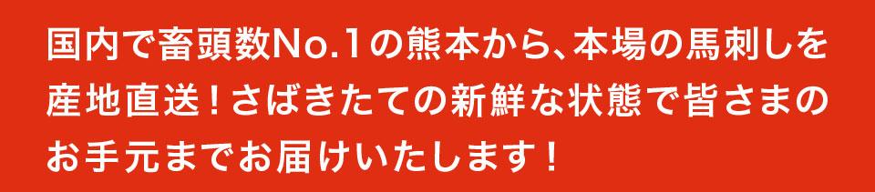 国内で畜頭数No.1の熊本から、本場の馬刺しを産地直送!さばきたての新鮮な状態で皆様のお手元までお届けいたします!
