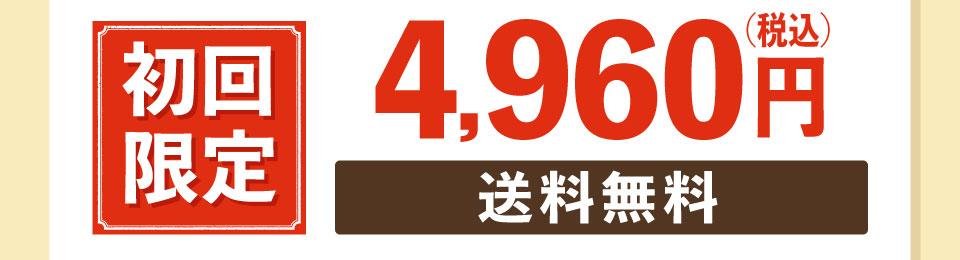 初回限定送料無料3,959円(税込価格4,276円)