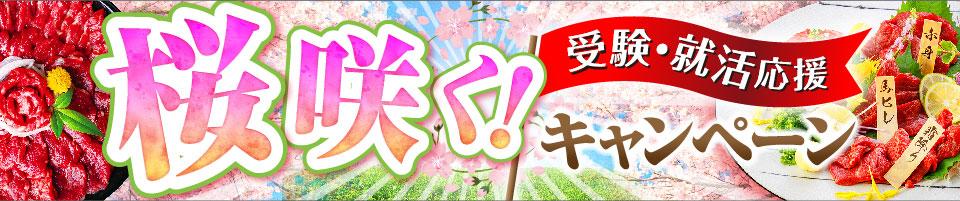受験・就活応援!桜咲くキャンペーン