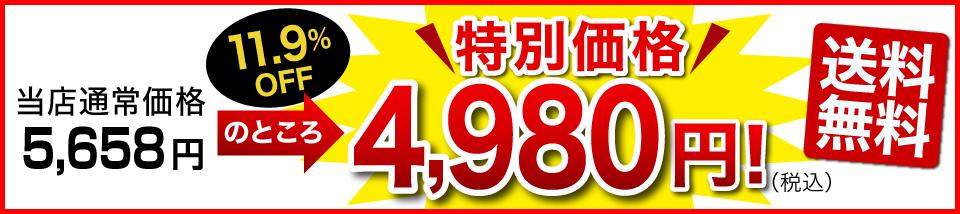 特別価格3,980円