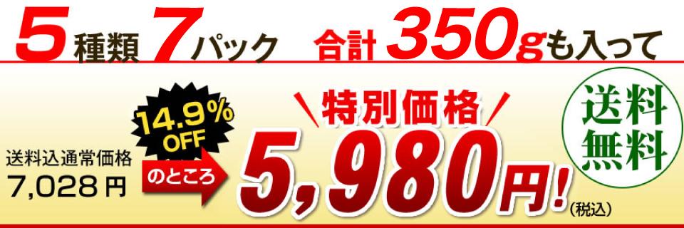 特別価格4,980円