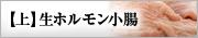 【上】生ホルモン小腸