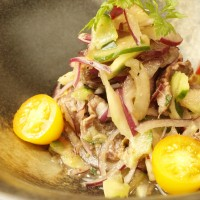 冷菜で広がる馬肉料理の新しい世界。カルパッチョやたたきなど