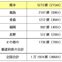 馬の生産量ランキング…2位は福島。1位は?