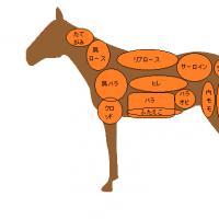 じつはこんなにある、馬肉の部位と種類